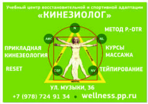 wellness.pp.ru